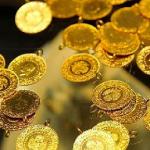 Senetle Altın Zeytinburnu